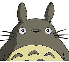 Totoro by lisa98