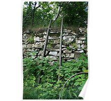 Garden Ladder  Poster