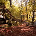 Healey Dell by Brian Stark