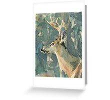 White Tail Deer 2 Greeting Card