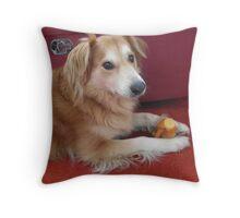 saz in my house Throw Pillow