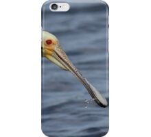Spoonbill Portrait iPhone Case/Skin