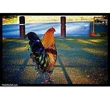 Naik Michel Photography Hawaii 015 Photographic Print