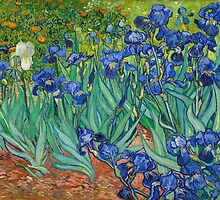 Vincent Van Gogh irisis by Acosmist