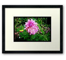 Naik Michel Photography - Hortensia House Garden Pink Flower 001 Framed Print