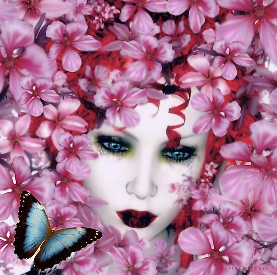 Madame Butterfly  by Shanina Conway