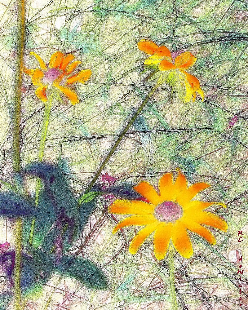 Meadow Out Loud by RC deWinter