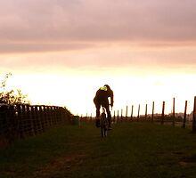 Evening Ride by Joe Shillaker