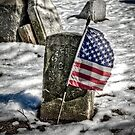 Ragged Old Flag by Brian Walter