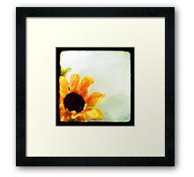 Sunflower II TTV  Framed Print
