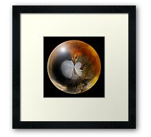 Robin in a Ball Framed Print