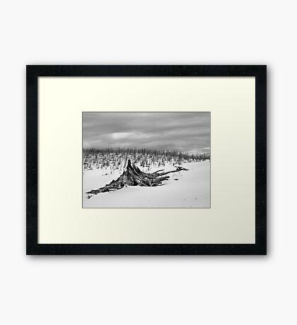 Silver Lake Sand Dunes - Weathered Framed Print