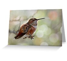 Tongue of a Hummingbird  Greeting Card