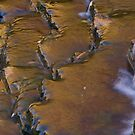 River Gold by chrisvsworld