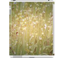 Soft Colours iPad Case/Skin