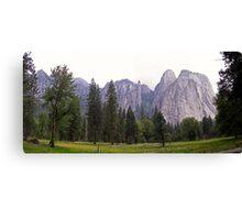 yosemite meadow Canvas Print