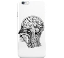 Anatomical Brain Drawing iPhone Case/Skin