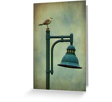 kew beach gull Greeting Card
