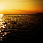 Fijian Sunset by Tisa