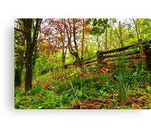 Fresh and Colorful Hillside - Impressions Of Spring Canvas Print
