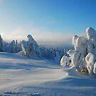 Winter wonderland by queensy
