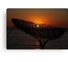 Sunrise through Sculpture - Bondi Beach Canvas Print