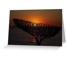 Sunrise through Sculpture - Bondi Beach Greeting Card