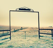 the farm gate by natalie angus