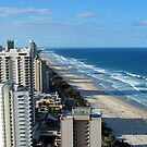 Surfer's Paradise by Stephen Horton