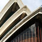 Front view - Sydney Opera House by lu138