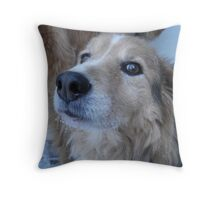 Buddy Boy Throw Pillow