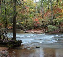 down stream by kathy s gillentine