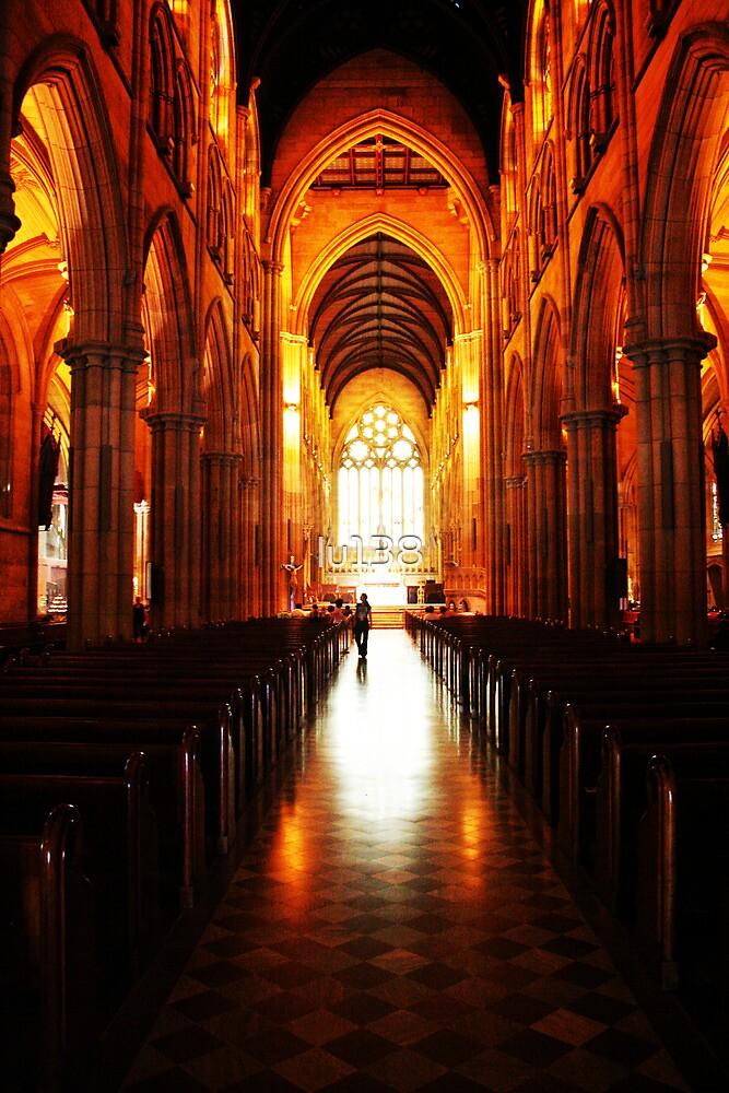 St Mary's Catholic Cathedral, Sydney by lu138