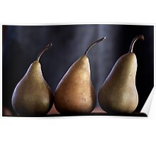 winter pears Poster