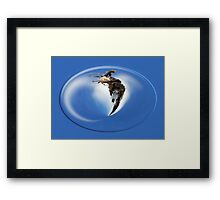 ©NS The Owner Of The House 360 FX. Framed Print