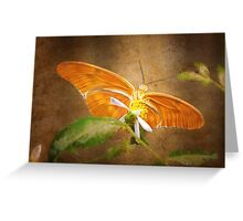 Beauty beneath her wings Greeting Card