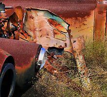 Multi Colored Rust   ( BoneYard Series ) by Carla Jensen