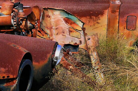 Multi Colored Rust   ( BoneYard Series ) by Carla Jensen