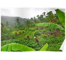 The green heart of Bali Poster