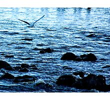 Home from the Sea Photographic Print