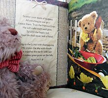 teddy and book by Joyce Knorz