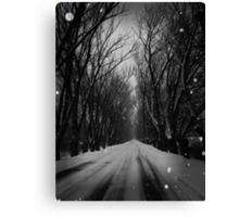 Winter Tree Tunnel Canvas Print