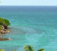 Le Diamant - Martinique, F.W.I. by Olivia Son