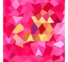 Brink Pink Abstract Low Polygon Background Photographic Print