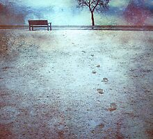 The Last Snowfall (February 24, 2010) by Tara  Turner