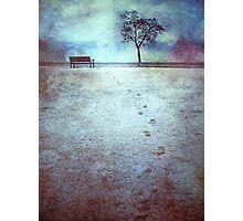 The Last Snowfall (February 24, 2010) Photographic Print