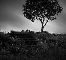 Alone Again by Aaron Radford
