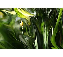 Abstract Insect on Yellow Flower Photographic Print