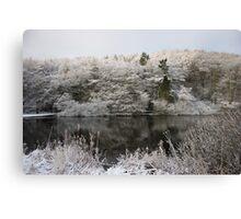 Snowy Lake Scene Canvas Print