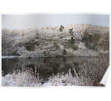 Snowy Lake Scene Poster